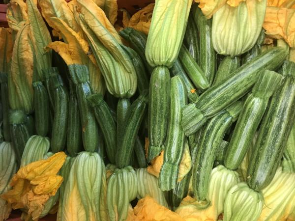 Zucchini produzione propria